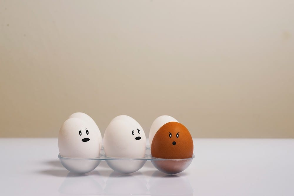 Eggs In Tray On White Surface 1556707
