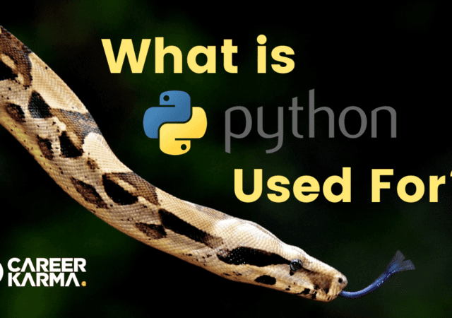 What is Python Used For?