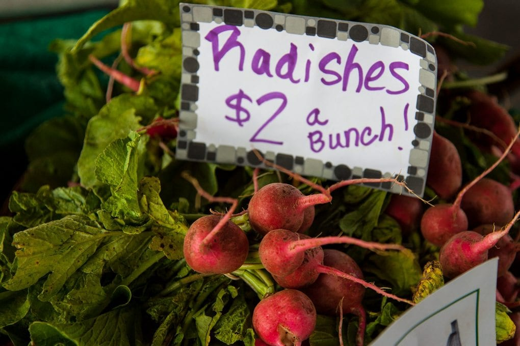 A bunch of radishes below a price tag