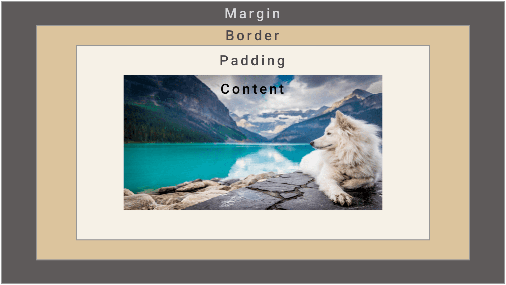 CSS Padding vs Margin: How to Tell the Difference