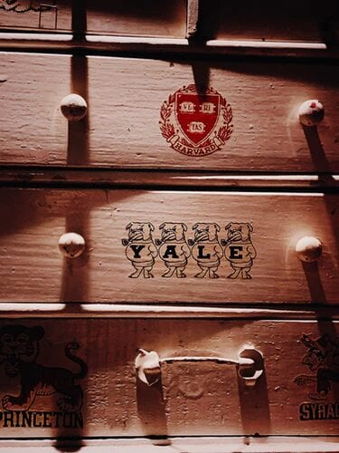 A Guide to the Best Ivy League Online Master's Degree Programs