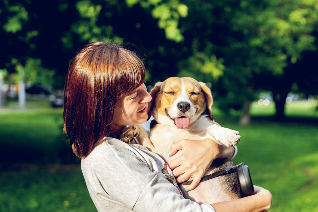 Woman smiling and holding beagle in park