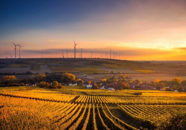Scenic view of farm fields and wind turbines in the distance