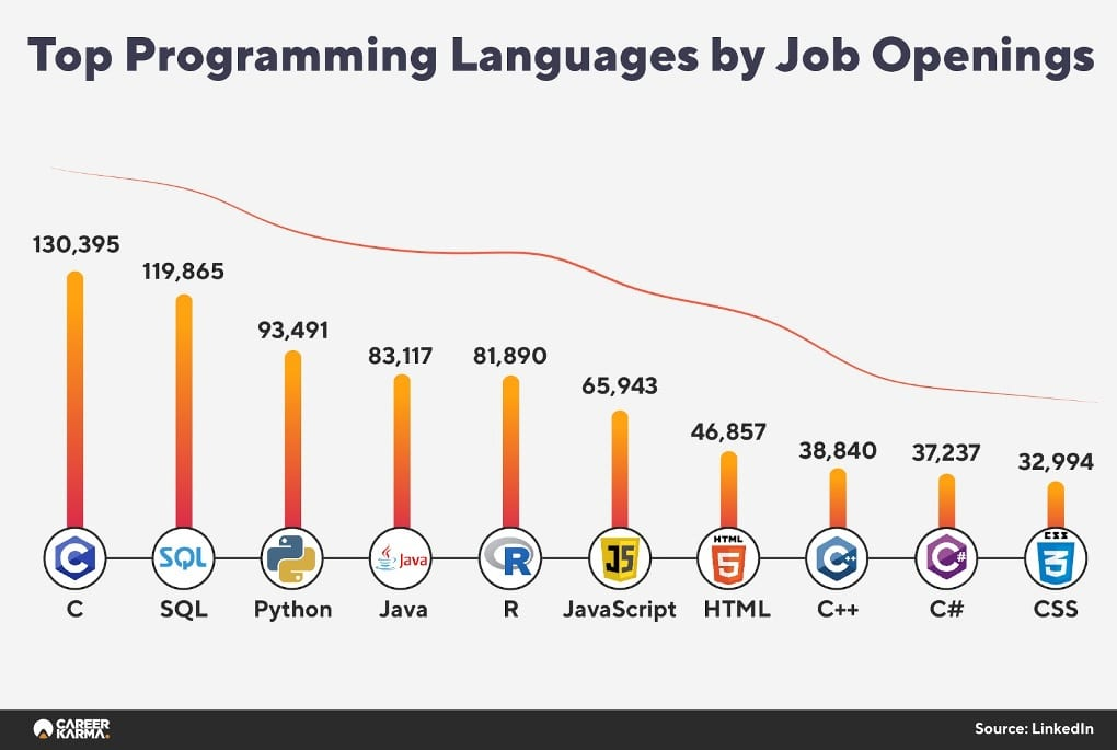 Programming Languages Report Infographics 03