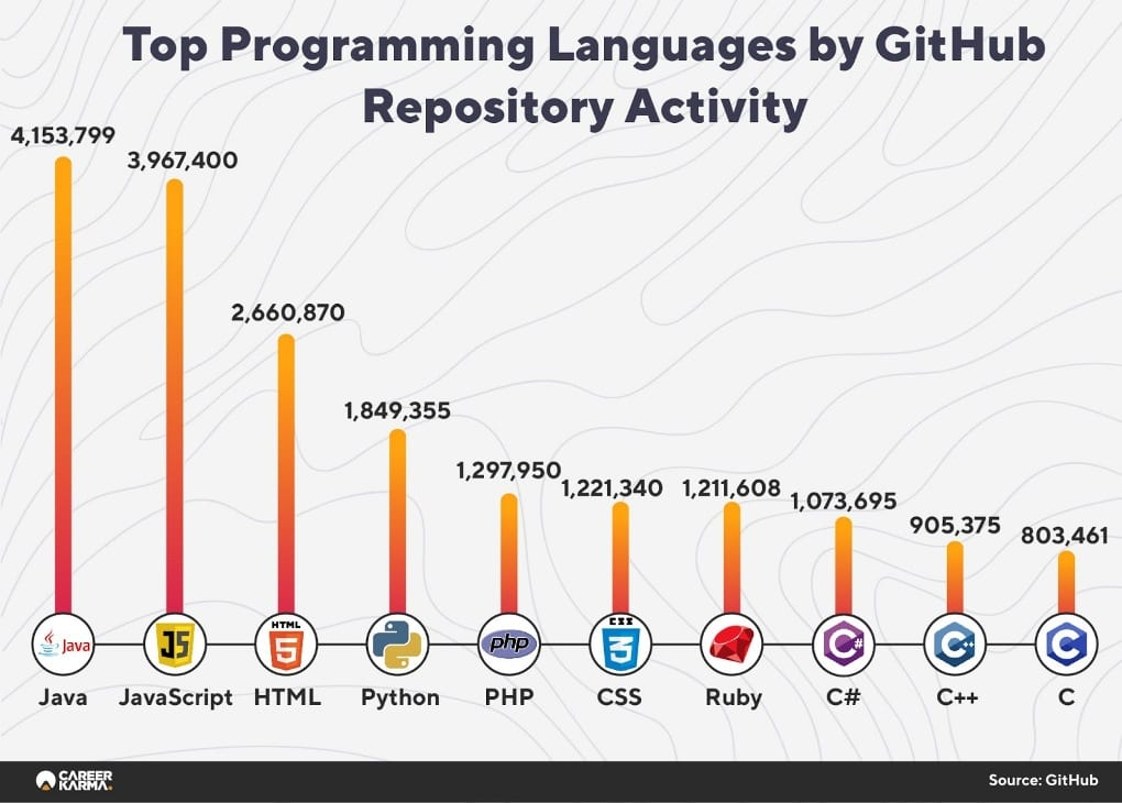 Programming Languages Report Infographics 05