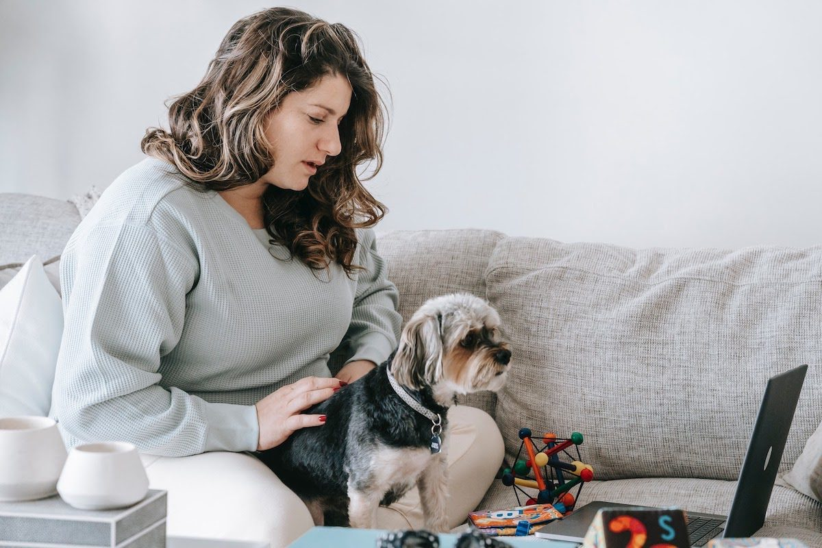 A woman and her dog looking at a laptop on a couch Tips to Prepare for a Python Interview